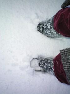 Snö över foten vartdetja